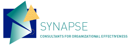 SYNAPSE CONSULTING Logo